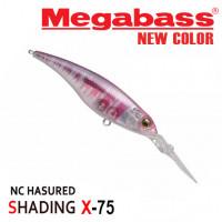 MEGABASS SHADING-X75 14