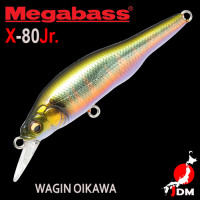 MEGABASS X-80JR 01