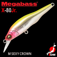 MEGABASS X-80JR 06