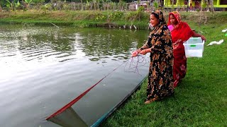 Cast Net Fishing - Traditional Cast Net Fishing in Village - village Fishing (Part-467)