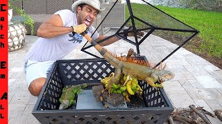 BEST IGUANA TRAP in FLORIDA! **How Cold Weather Helps**