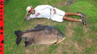 POND WHALE is Now a 50LB NEW PET! **The Pacu Piranha**