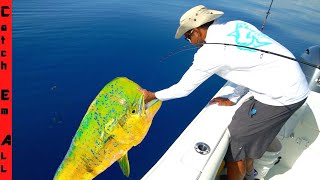 GIANT COLORFUL FISH Caught and COOKED! **California to Florida**