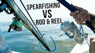 Spearfishing VS Rod & Reel