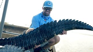 Fishing for GIANT Alligators - My First-Ever Gator Trip!!