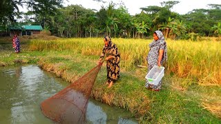 Best Of Net Fishing - Traditional Cast Net Fishing in Village - Fishing Will Beautiful Nature