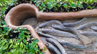 Amazing  Trap- Smart Boy Build Fish Trap By Muddy soil With Fishing Bait ..