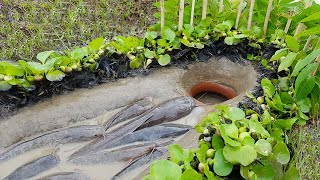 Amazing Trap Fishing | CatFish Trap- Amazing Boy Build Fish Trap By Muddy soil Useing Clay Pot