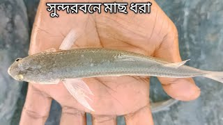 Net Fishing in River - Net Fishing in The Sundarban River - Fishing in Sundarban