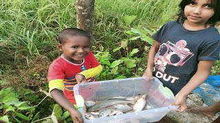 Net Fishing - Cast Net Fishing in Village - Fishing With Beautiful Nature (Part-490)