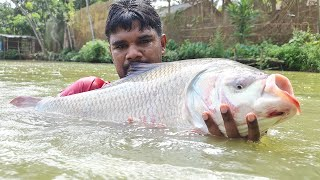 Amazing Monster Big Fish Catch With Cast Net