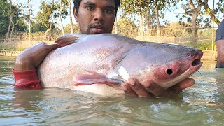 Amazing Cast Net Fishing | Unbelievable Fishing | Most Satisfying Cast Net Fishing Video