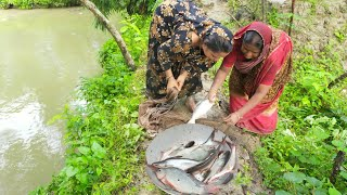 Catching Big Catfish By Village Aunty - Net Fishing in Village - Machhali Wala