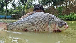 Amazing Cast Net Fishing | Unbelievable Fishing | Cast Net Fishing !