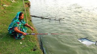 Amazing! Village Aunty Catching Big Catfish By Hook - Traditional Hook Fishing