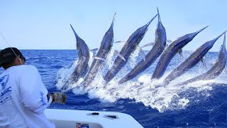 Amazing Dangerous Giant Black Marlin Fishing - Fastest Huge Swordfish Fishing & Cutting Skills