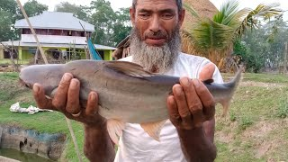 Best Fishing Video - Catching Big Catfish By Cast Net - Fish Video