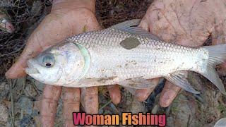 Fish Fishing - Catching Big Fish By Cast Net - Machhali Wala